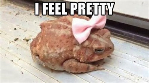 cute pretty frogs toads - 7980724992