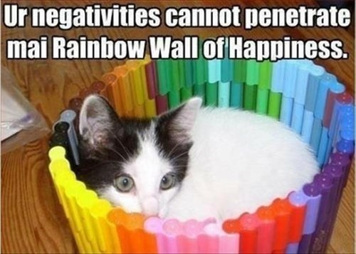 happiness Nyan Cat rainbow