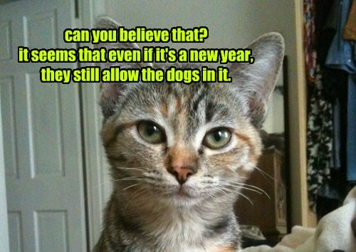 can you believe that? it seems that even if it's a new year, they still allow the dogs in it.
