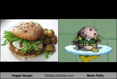 totally looks like veggie burger nasty patty - 7981723392