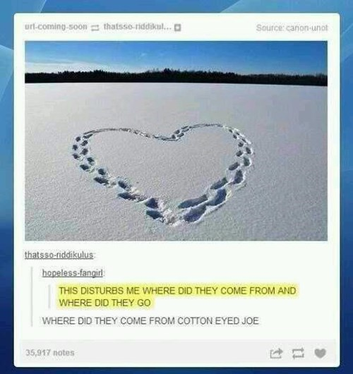 tumblr cotton eyed joe - 7982539520