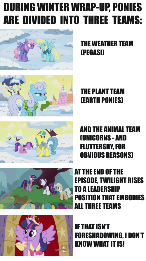 alicorn,foreshadow,winter wrap up,pony types