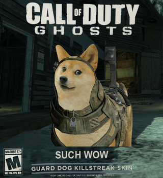 call of duty,doge,cal-of-duty-ghosts