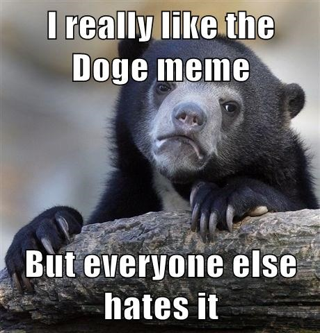 I really like the Doge meme But everyone else hates it