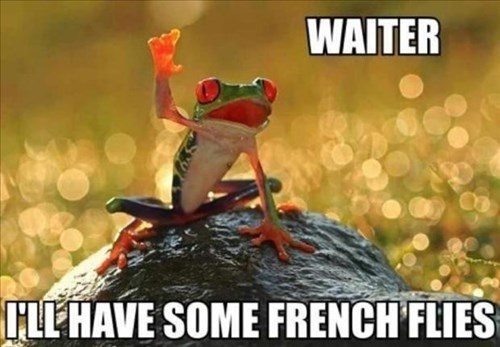 funny,frogs,puns,waiter,french flies