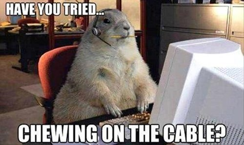 computer gophers it troubleshooting