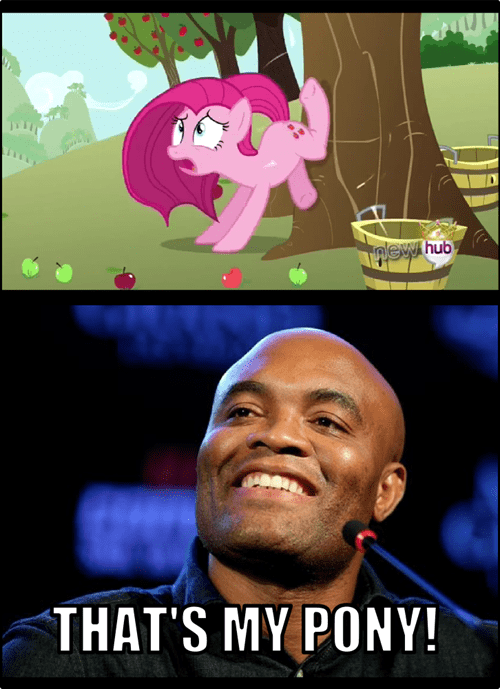break a leg,pinkie pie,silva,my pony