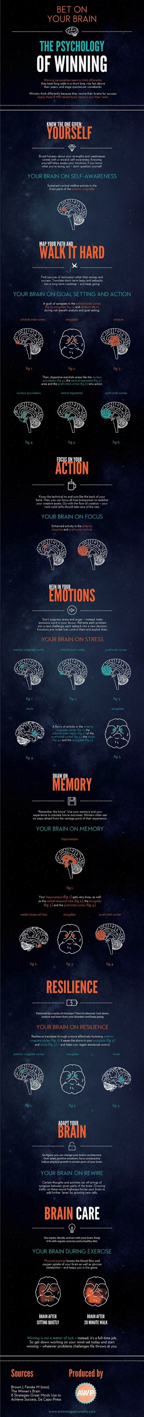 winning infographic psychology - 7984193792