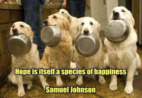 Hope is itself a species of happiness  Samuel Johnson
