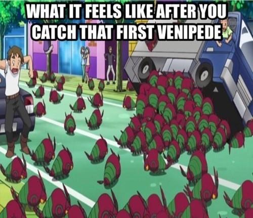Pokémon venipede - 7984433920