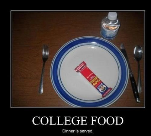food,college,funny,granola bar