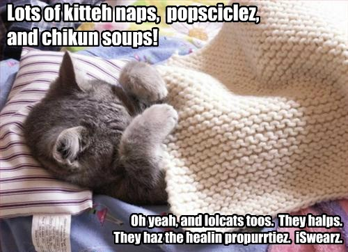 Lots of kitteh naps, popsciclez, and chikun soups! Oh yeah, and lolcats toos. They halps. They haz the healin propurrtiez. iSwearz.