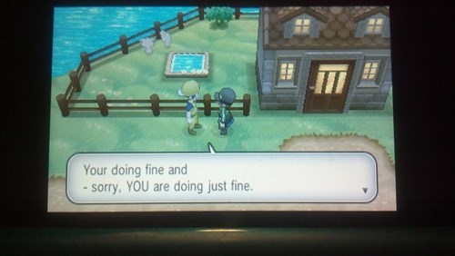 grammar,Pokémon,you are,your