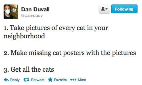Cats,twitter,evilest
