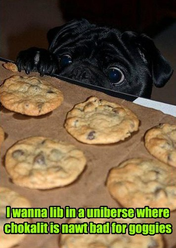 cookies cute dogs - 7984736768