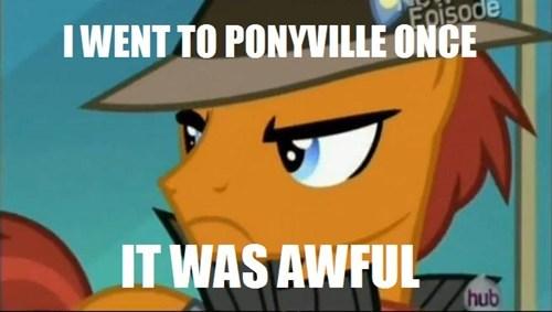ponify,ponyville,grumpy pony