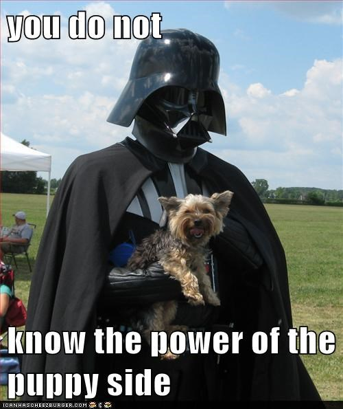 dark side,funny,puppies,star wars