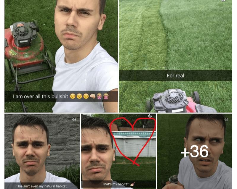 Mow Lawn Struggle