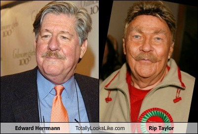 totally looks like rip taylor,edward herrmann