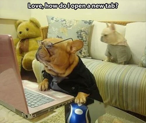 computers dogs funny parents - 7988800768