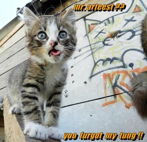 art,cute,kitten,graffiti,tongue