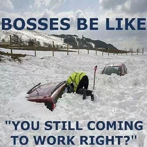 snow traffic monday thru friday g rated - 7989662464