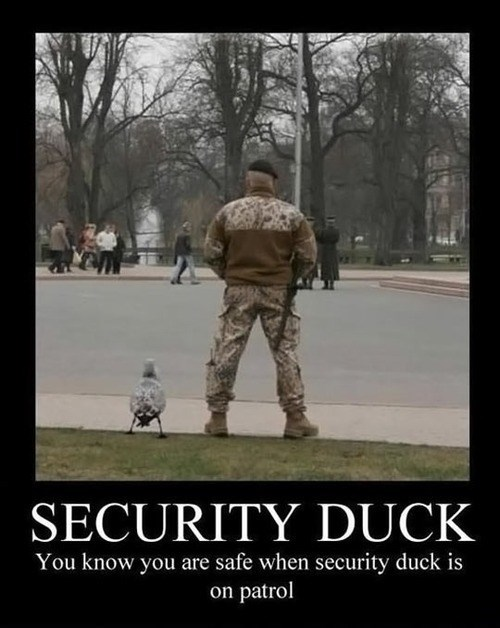 duck funny pee security - 7990543360