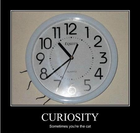 Death curiosity funny wtf - 7990546688