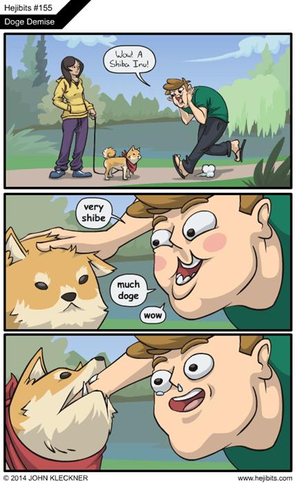 dogs shiba inus web comics doge - 7990563328