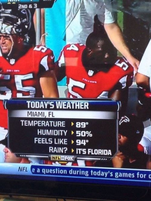 florida football nfl weather sports - 7990920704