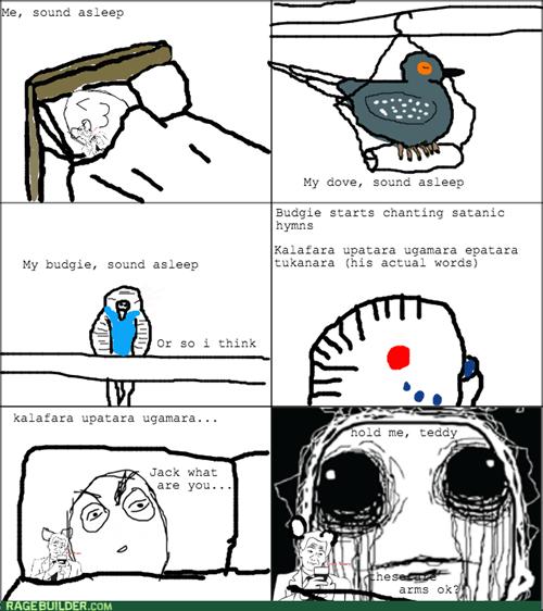 birds pets sleeping - 7991175680