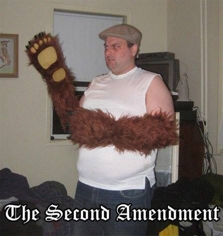 bears,second amendment,wtf