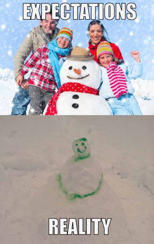 expectations vs reality,snow,snowmen,winter