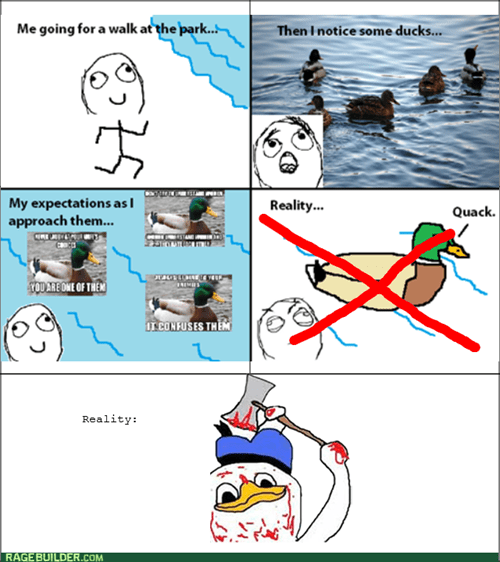 Re-Raged: Don't Take Advice From a Duck