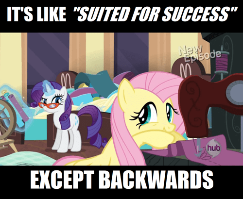 fluttershy,rarity,suited for success