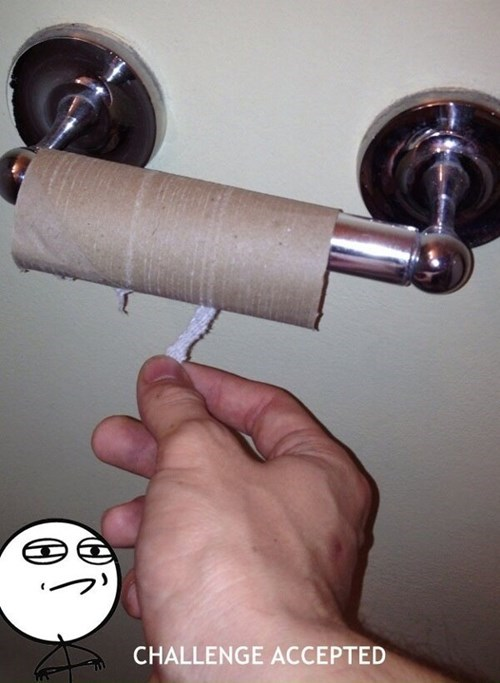 Challenge Accepted,toilet paper