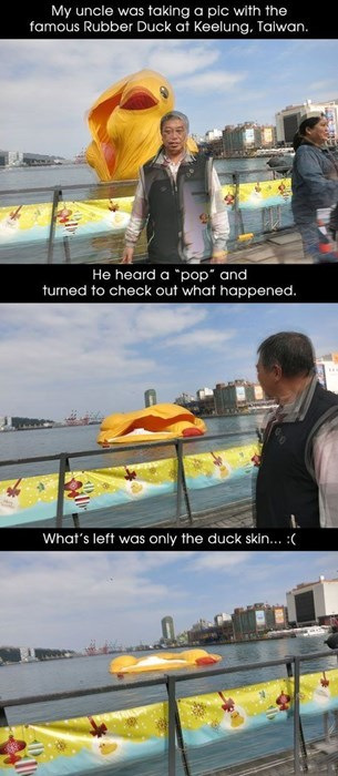 disappointment Sad rubber duck - 7992651008