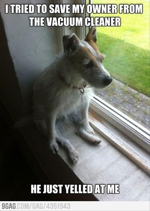 cute dogs rescue vacuum - 7992673280