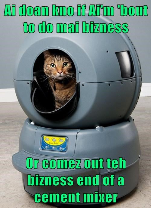 Cats funny futuristic test - 7992694528