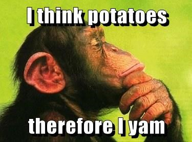 apes,chimpanzee,puns,thoughts,potatoes,yams