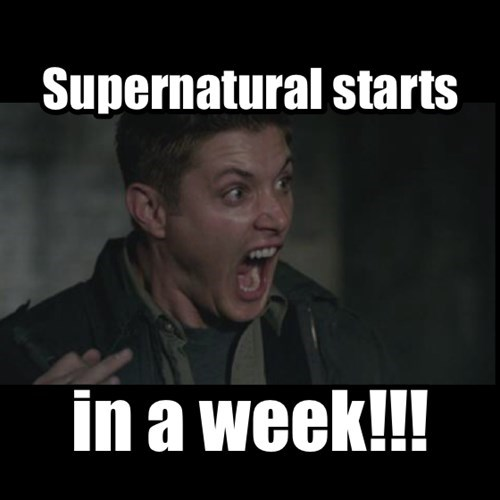 Every Supernatural fan today.