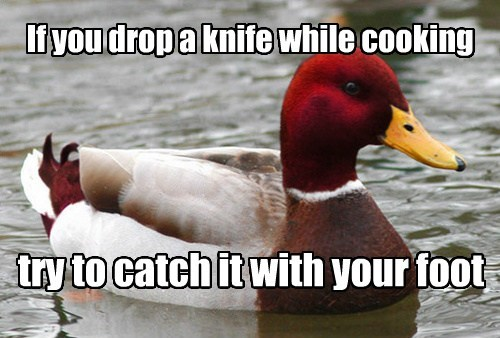 cooking,Memes,malicious advice mallard