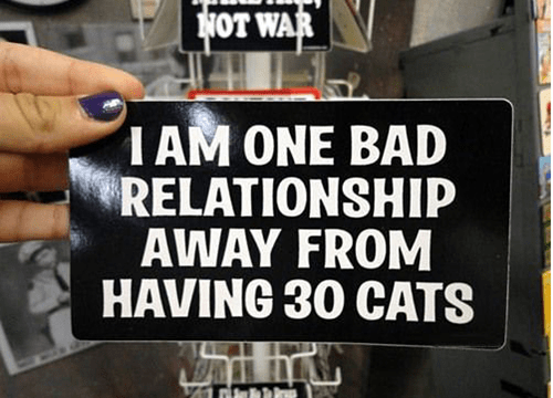 cat lady funny relationship stickers