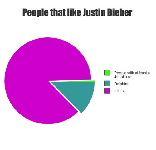 Music fans Pie Chart justin bieber - 7994369536