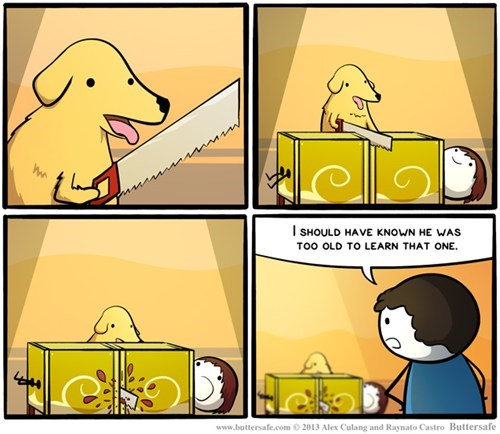 dogs,saws,tricks,web comics