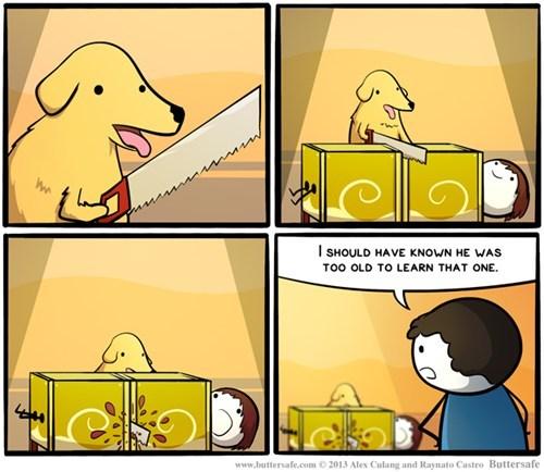 dogs saws tricks web comics - 7994556416