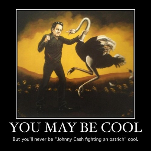 cool,fight,johnny cash,funny