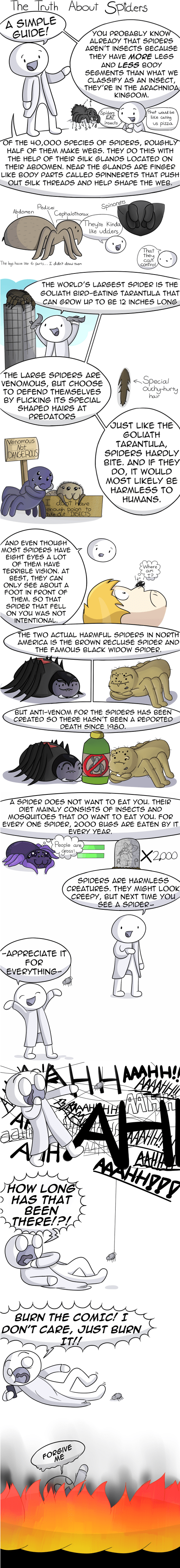 spiders,science,web comics