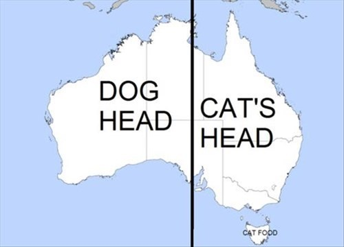 Map Of Australia Meme.This Map Shows Australia Is Divided Between Cats And Dogs