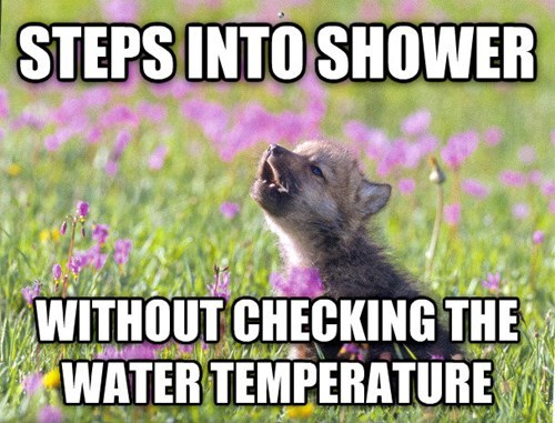baby insanity wolf advice animals Memes showers - 7996103424